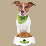 Hundefutter Tester werden