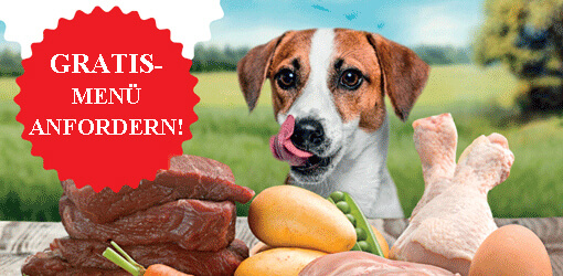 Hundefutter kostenlose probe