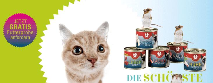 kostenlose Katzenfutter Probe